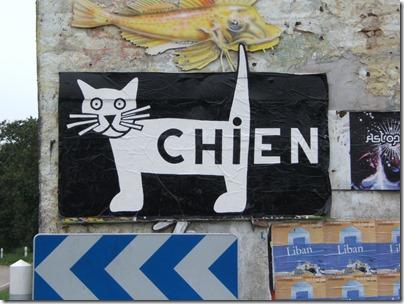 Affiche-Chien