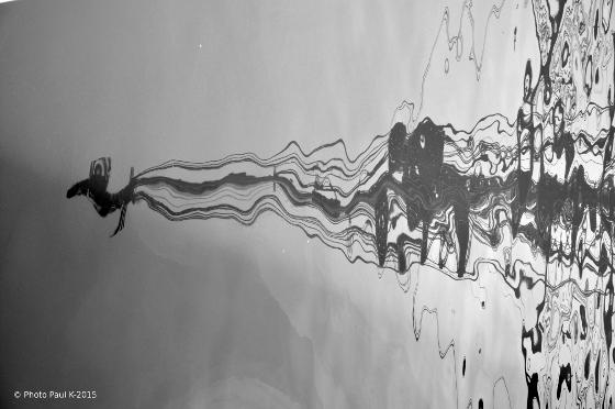 Reflet-Hermione