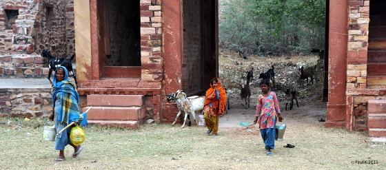 Fatehpur Siki (1)