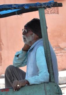 Jaipur-rue-(7)