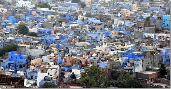 Jodhpur-Bleu-1_thumb.jpg