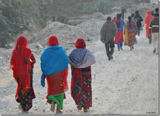 Rte-Bikaner-Jodhpur-16_thumb.jpg