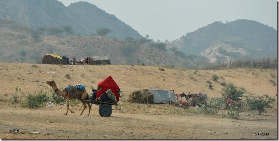 Rte-Pushkar-Jaipur(33)