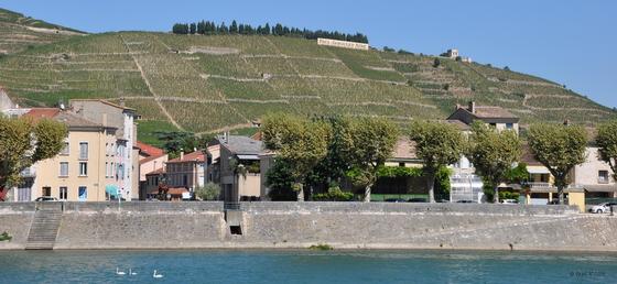Vignobles de Cotes du Rhône